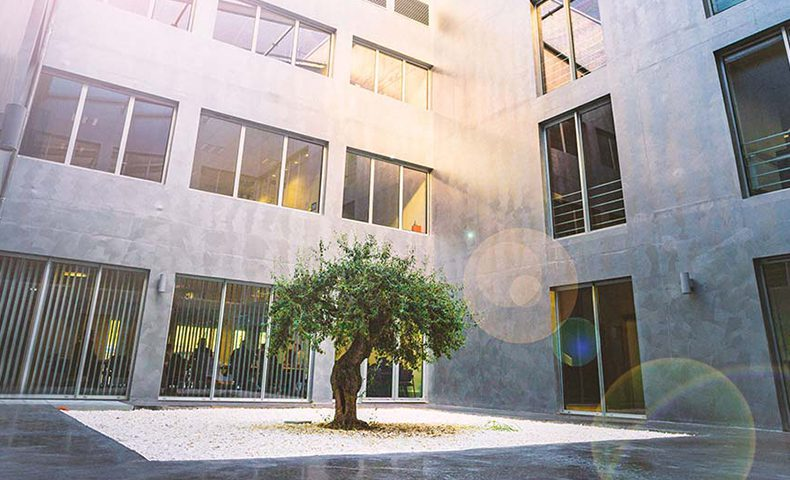 Interieur PRAXENS arbre